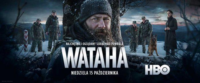 Wataha ponownie w Bieszczadach