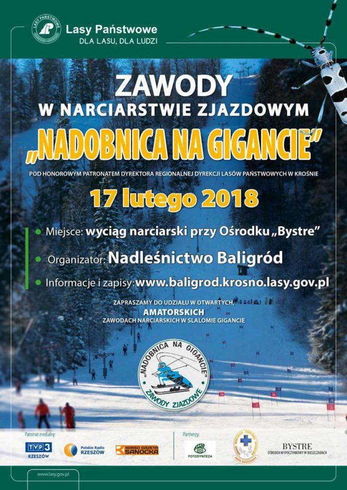 Zawody w narciarstwie zjazdowym pn.