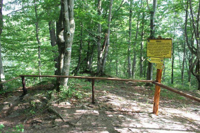 Remont ścieżki historyczno–przyrodniczej