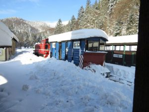 Kursy zimowe Bieszczadzkiej Kolejki Leśnej