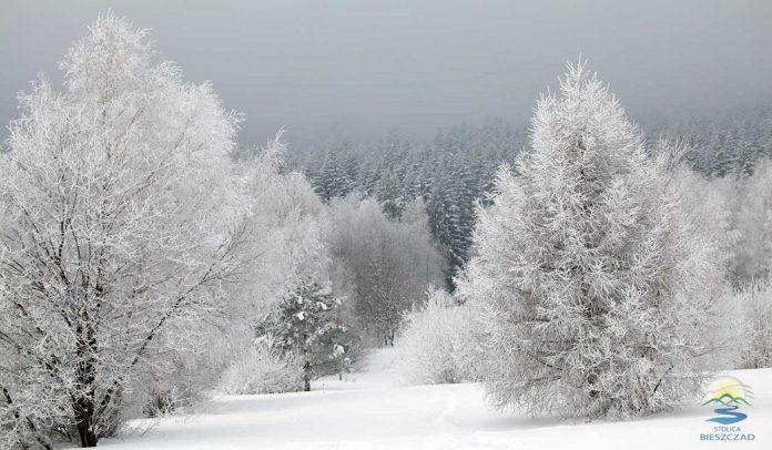 Uwaga! Trudne warunki pogodowe w Bieszczadach