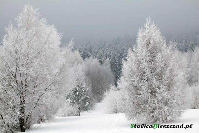 Uwaga - intensywne opady śniegu w Bieszczadach / fot. Z.Krasowski