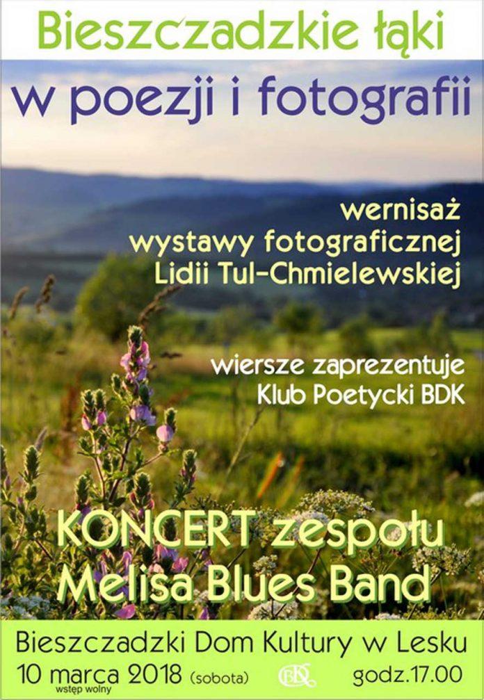 Bieszczadzkie łąki w poezji i fotografii w Lesku