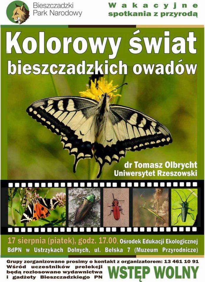 Kolorowy świat bieszczadzkich owadów