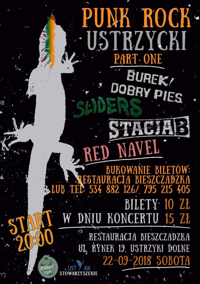 Punk Rock w Bieszczadzkiej w Ustrzykach Dolnych