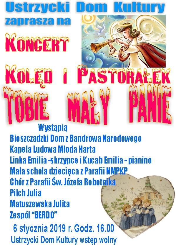 Koncert Kolęd i Pastorałek w Ustrzykach Dolnych